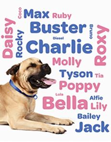 lista de nombres de perros